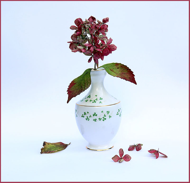S47-Hydrangeas Fading into Art.jpg